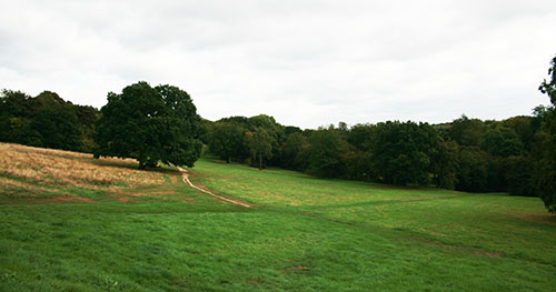 Unanimous support for play space on Chorleywood Common