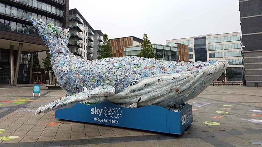 Watford MP encourages businesses to #PassOnPlastic with Sky Ocean Rescue